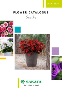 catalogue 2019-2020 SEED